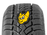 CONTINENTAL WINTER CONTACT TS 780 175/70 R13 82T M+S