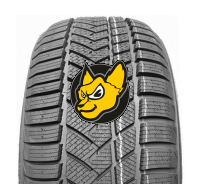 FORTUNA WINTER UHP 205/60 R16 96H XL