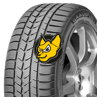 NEXEN WINGUARD SPORT 245/40 R19 98V XL