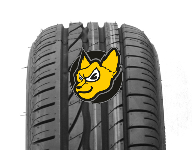 Bridgestone Turanza ER 300 205/55 R16 91W (*) Runflat [bmw] [bmw]